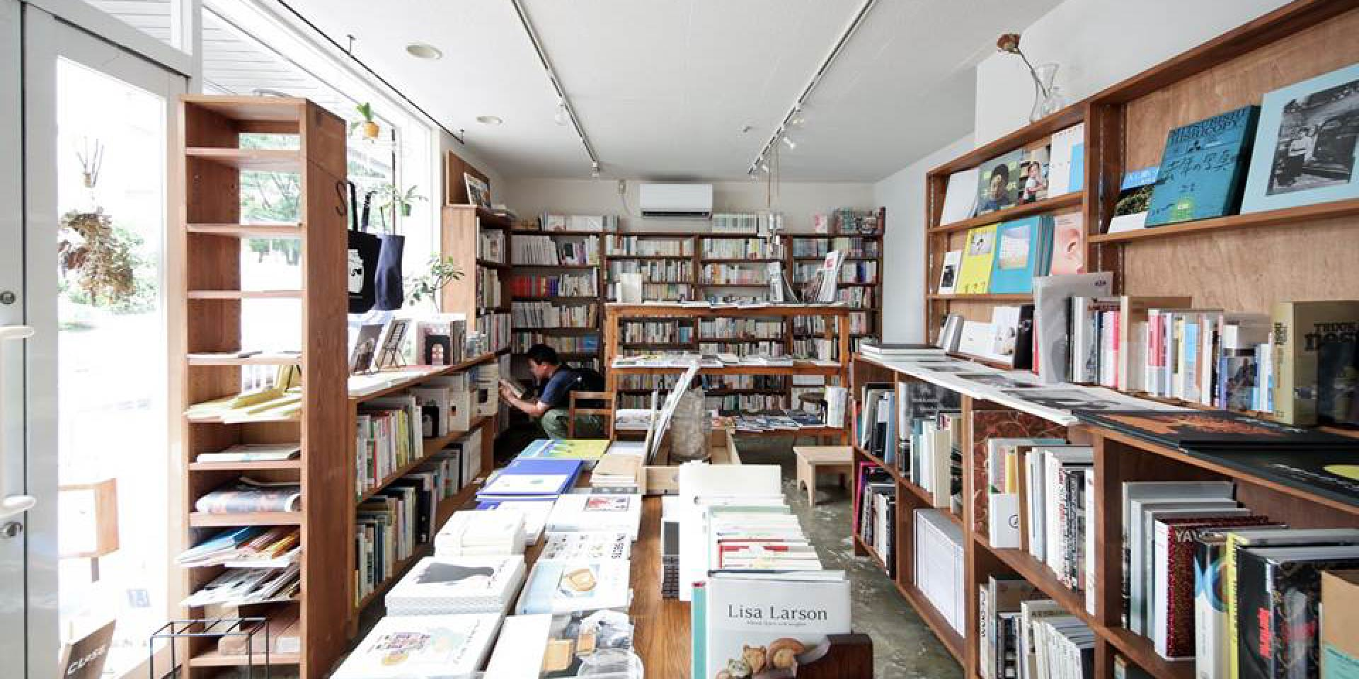 black bird books